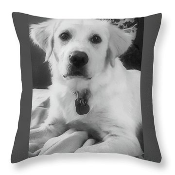 Throw Pillow featuring the photograph Ruby by Bruce Carpenter