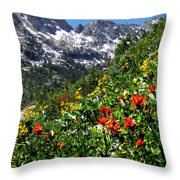 Ruby Mountain Wildflowers - Vertical Throw Pillow by Alan Socolik