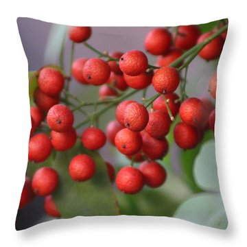 Ruby Red Berries Throw Pillow