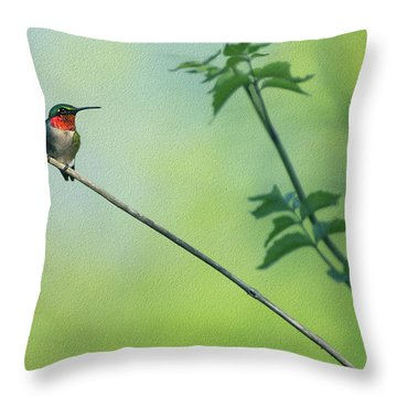 Ruby Red Perch Throw Pillow