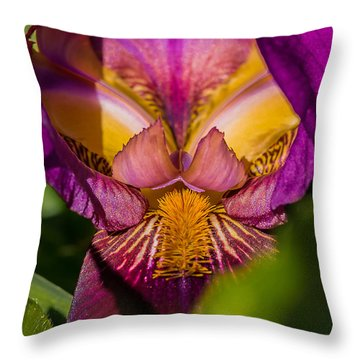 Ruby Royal Robe Throw Pillow