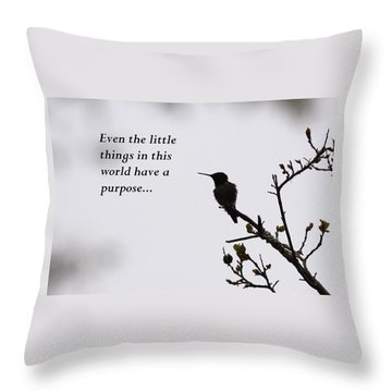 Ruby-throated Hummingbird - Little Things Throw Pillow by Travis Truelove
