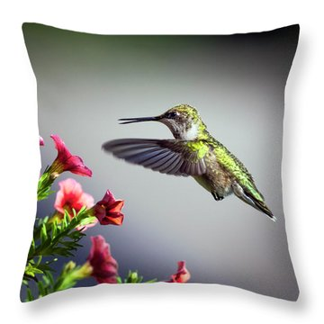 Ruby Throated Hummingbird #1 Throw Pillow