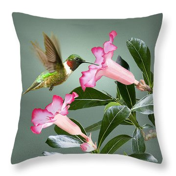 Ruby-throated Hummingbird And Desert Rose Throw Pillow