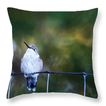 Ruby-throated Hummingbird  Staying Warm Throw Pillow by Edward Peterson