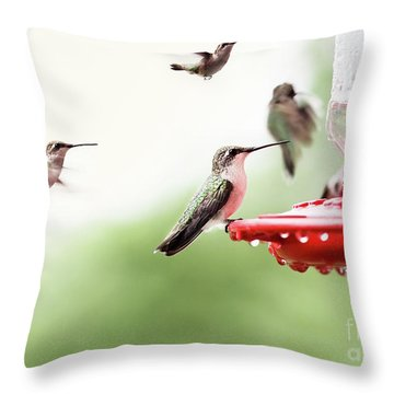 Throw Pillow featuring the photograph Ruby-throated Hummingbirds by Stephanie Frey
