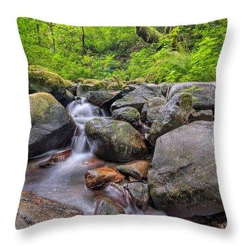 Ruckel Creek Throw Pillow by David Gn