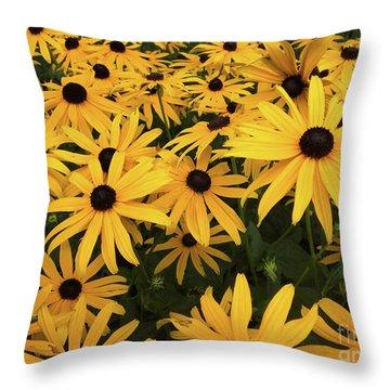 Rudbeckia Fulgida Goldsturm Throw Pillow