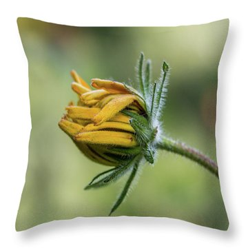 Throw Pillow featuring the photograph Rudbeckia Fuzzy Bud by Patti Deters