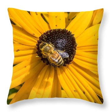 Rudbeckia With Bee Throw Pillow