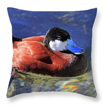 Ruddy Duck 2 Throw Pillow