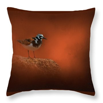 Designs Similar to Ruddy Turnstone