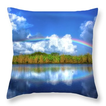 Rue's Rainbow Throw Pillow