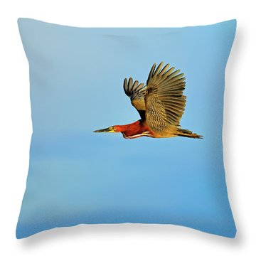 Rufescent Throw Pillow by Tony Beck