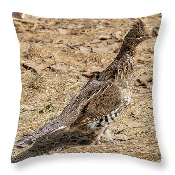Throw Pillow featuring the photograph Ruffed Grouse by Betty Pauwels