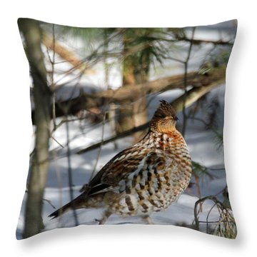 Ruffed Grouse In Winter Throw Pillow