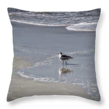 Throw Pillow featuring the photograph Ruffled Feathers by Michael Colgate