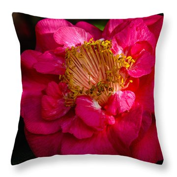 Ruffles Of Pink  Throw Pillow
