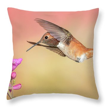 Rufous Hummingbird With Penstemon Throw Pillow