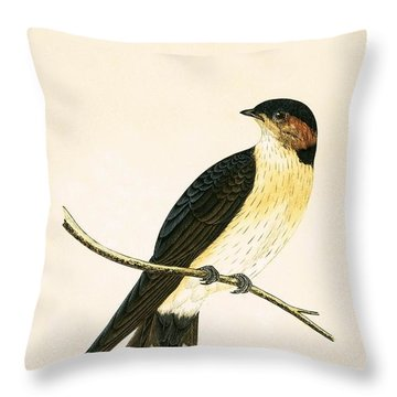 Rufous Swallow Throw Pillow by English School