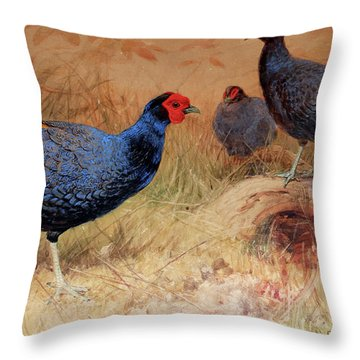 Rufous Tailed Crested Pheasant Throw Pillow by Joseph Wolf