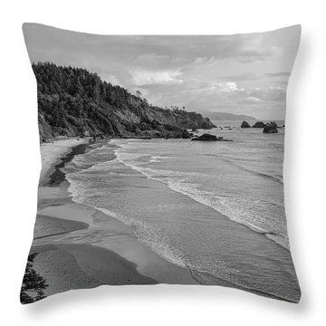 Rugged Beauty Throw Pillow by Don Schwartz