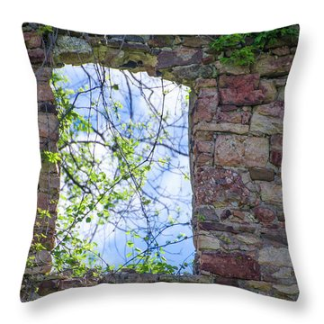 Throw Pillow featuring the photograph Ruin Of A Window - Bridgetown Millhouse  Bucks County Pa by Bill Cannon