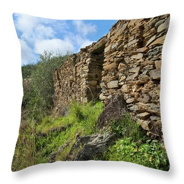 Ruins Of A Schist Cottage In Alentejo Throw Pillow by Angelo DeVal