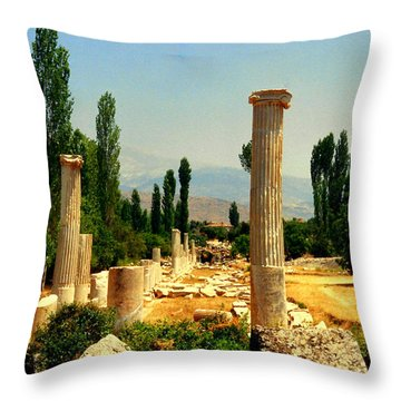Ruins Of  Aphrodisias Throw Pillow