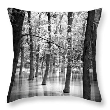Rule Of 3 Throw Pillow