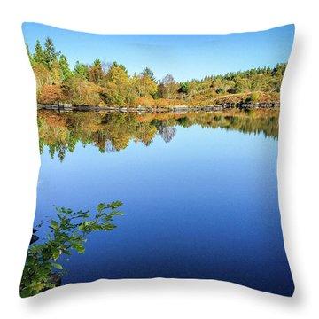 Ruminating The Fall Throw Pillow