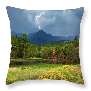 Throw Pillow featuring the photograph Run For Cover by Rick Furmanek