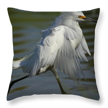 Run Snowy Run Throw Pillow