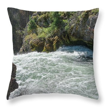 Run To The Brink Throw Pillow
