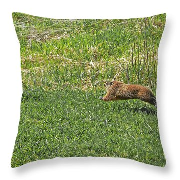 Running, Jumping, Almost Flying Marmot Throw Pillow