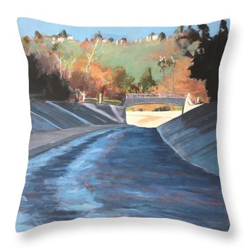 Running The Arroyo, Wet Throw Pillow