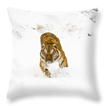 Running Tiger Throw Pillow