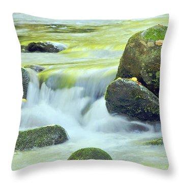 Running Water Throw Pillow