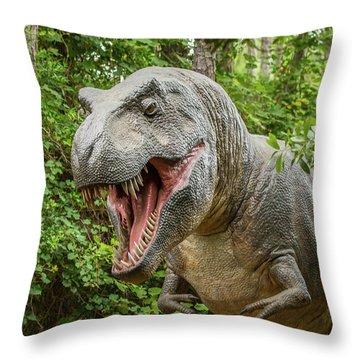 Runnnn Throw Pillow