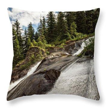 Runoff Throw Pillow