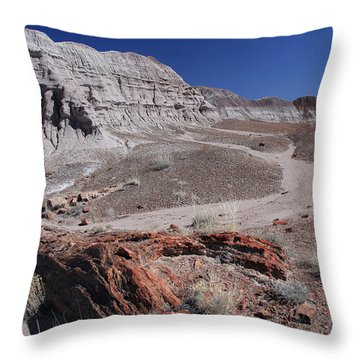 Runoff Obstacle Throw Pillow
