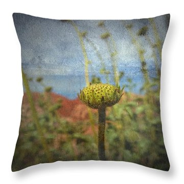 Throw Pillow featuring the photograph Runt  by Mark Ross