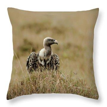 Ruppells Griffon Vulture Throw Pillow