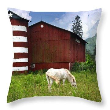 Rural America Throw Pillow by Lori Deiter