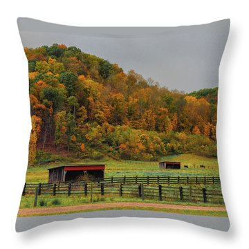 Rural Beauty In Ohio  Throw Pillow