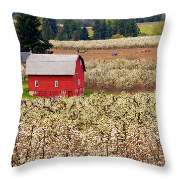 Rural Color Throw Pillow by Mike  Dawson