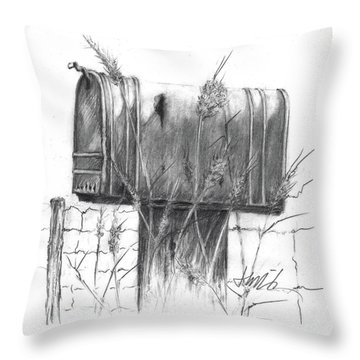 Rural Country Mailbox Throw Pillow