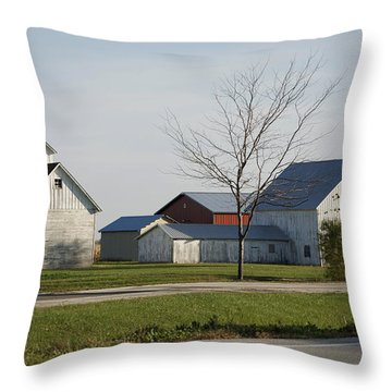 Rural Farm Central Il Throw Pillow by Thomas Woolworth