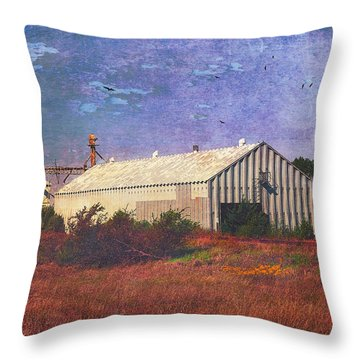 Throw Pillow featuring the photograph Rural Grain Elevator by Anna Louise