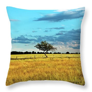 Rural Idyll Poetry Throw Pillow